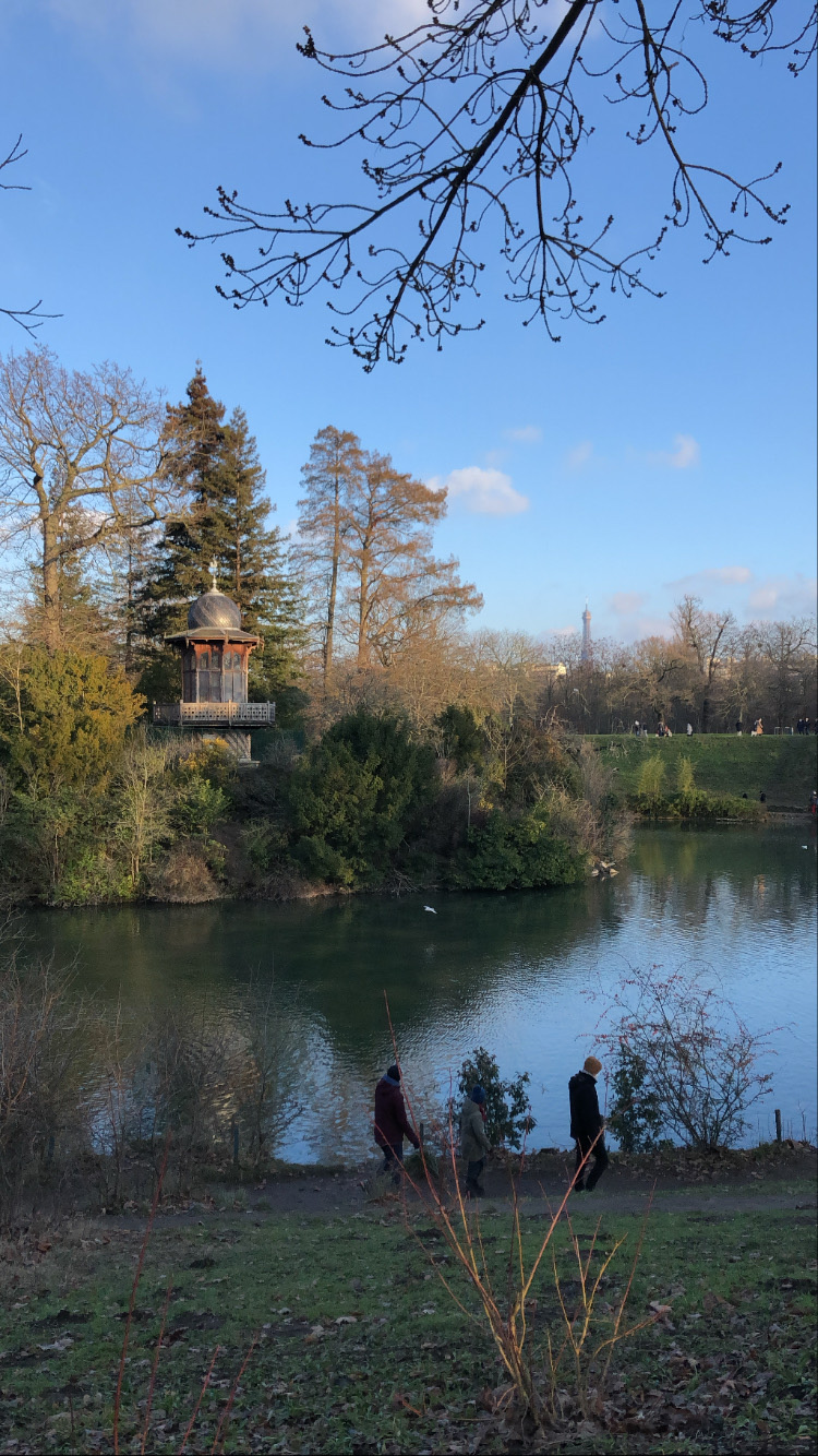 View of the Eiffel Tower from the Bois de Boulogne - Paris Guide - The Morning Walk